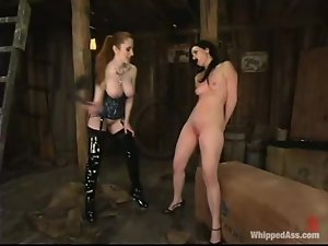 Ariel X keeps Natali Demore in the horse barn to torture