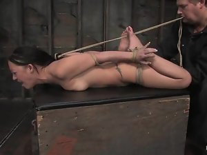Horny Kylee King gets hanged upside down and toyed