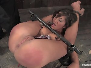 Hog tied Angelica Saige gets her shaved pussy toyed