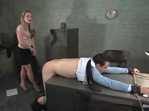 Harmony beats Max Powers and pulls him by the cock in BDSM scene