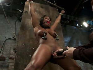 Ebony Yasmine Loven gets her tits tortured and pussy toyed