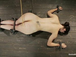 Bobbi Starr gets beaten and fucked by a sex machine in BDSM scene