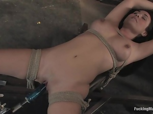 Fetish fantasies with Holly West and a fucking machine