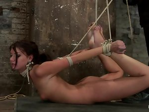 Cassandra loves getting licked in hogtie suspension