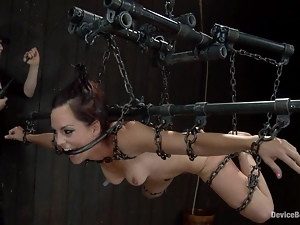 Bryn Blayne gets beaten and fucked with toys in awesome BDSM clip