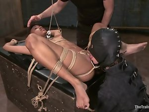 Nikki Darling gets her holes smashed by Owen Gray in awesome BDSM vid
