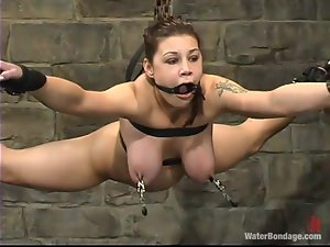Being suspended with nipples and pussy lips twitched is bad