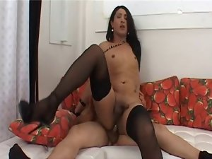 Lewd Latina Transvestite Rough Banging