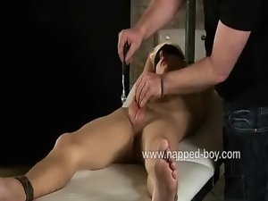 Blond bombshell Max Brown bound and stroked