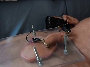 Squashed balls with elec prick torture cbt