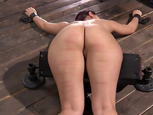 Gabriella Paltrova keeps quiet being hogtied and spanked